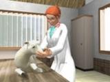 Maak als dierenarts verschillende  soorten zieke dieren beter!