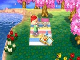 Lekker picknicken tussen de roze bomen. Ik heb 2 stoelen, wie komt er?