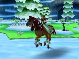 Tip: ga nooit met een 400 kg zwaar paard het ijs op...