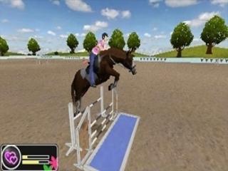 Train je paard voor nog betere resultaten.