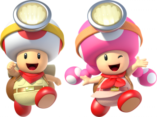 Zowel Toad als Toadette zijn speelbaar! Dit is per level anders.