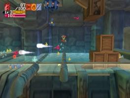 Doorheen het level verzamel je wapens, upgrades en hartjes. Uiteindelijk moet je sterker uit het level komen dan voorheen.