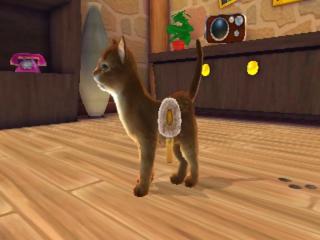 I Love My Cats: Screenshot