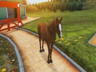 afbeeldingen voor I Love My Horse