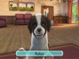 Kies je eigen puppy, en geef hem een naam!