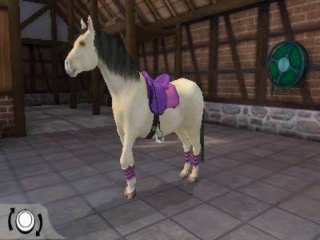 afbeeldingen voor I Love My Pony