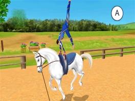 Kunstjes doen op je paard. Hoort het juist niet omgekeerd te zijn?