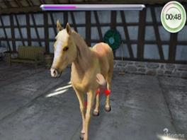 Het spel is niet alleen leuk, ook leerzaam: Leer hoe je een paard verzorgd!