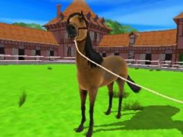 Waarom zou je op een paard rijden als je hem ook kan uitlaten?