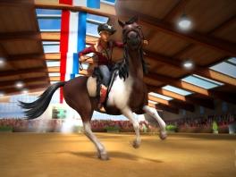 Wat dit paard nou precies tot een westernpaard maakt, weet ik ook niet...