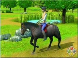 Één van de belangrijkste taken van een dierenarts is... paardrijden?