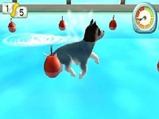 afbeeldingen voor Pets Paradise Resort 3D