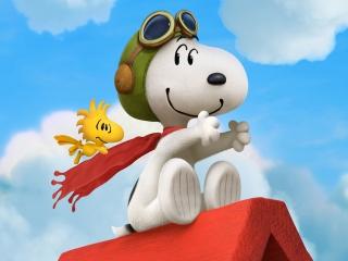 Ja hoor, je ziet het goed. Snoopy is helemaal klaar voor.