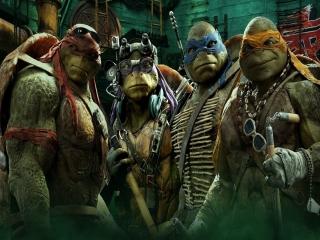 Speel als de schildpadden Leonardo, Donatello, Raphael & Michelangelo!