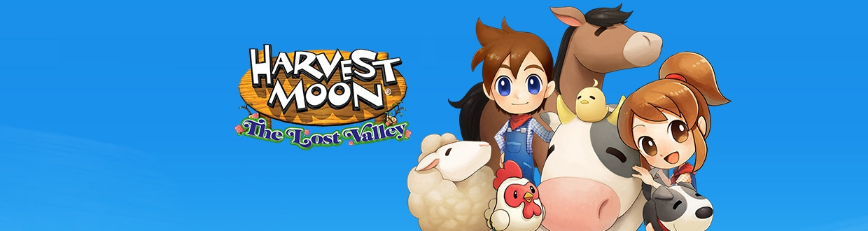 Banner Harvest Moon The Lost Valley